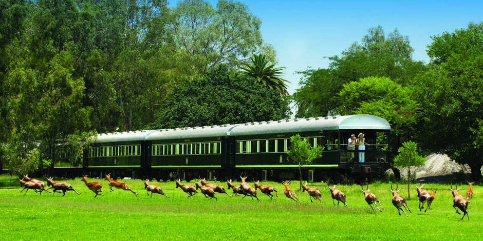 Voiture observation du Train Rovos Rail