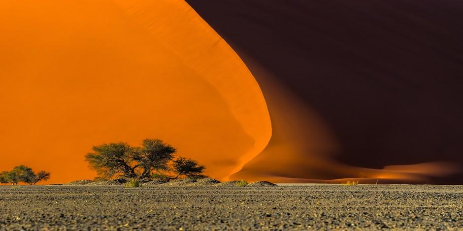 Dune 40 dans le Parc National Namib-Naukluft