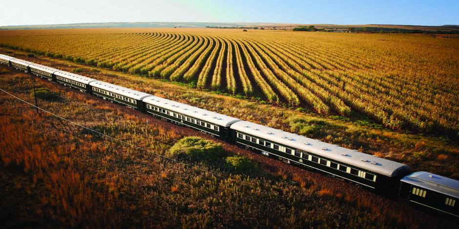 Train Rovos dans la campagne sud-africaine