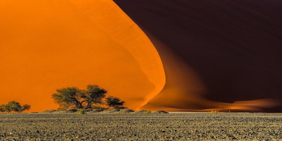 Dunes 40 de Vlei