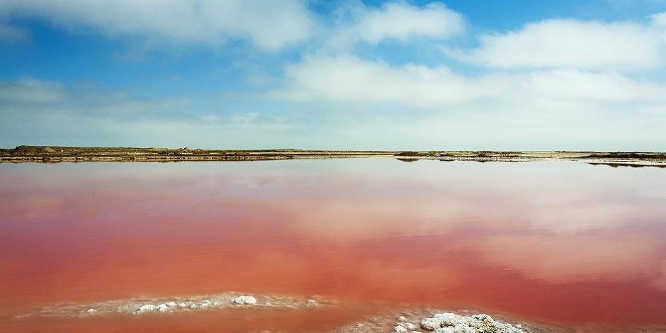 Lac salé rouge