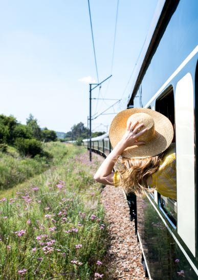 A la fenêtre en Train Rovos en Afrique du Sud